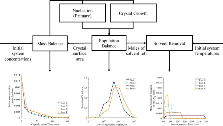 Development and validation of a two-dimensional population balance model for a supercritical CO2 antisolvent batch crystallization process.